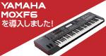 【スタジオノア都立大店】YAMAHA MOXF6を導入しました!