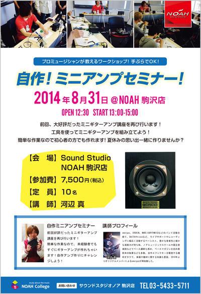 nc_amp2.jpg
