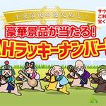 noah_takarakuji.jpg