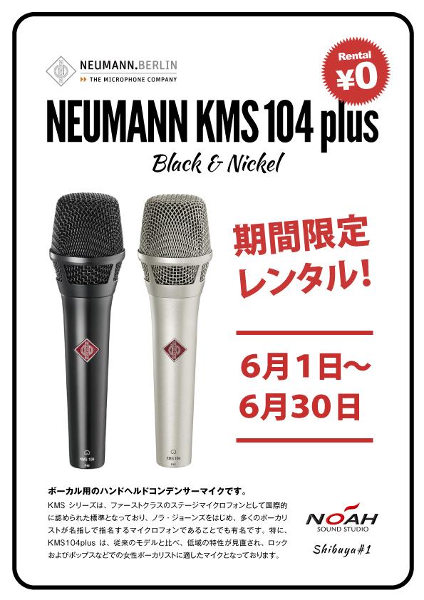15.5_shibu1neumann_kms104.jpg