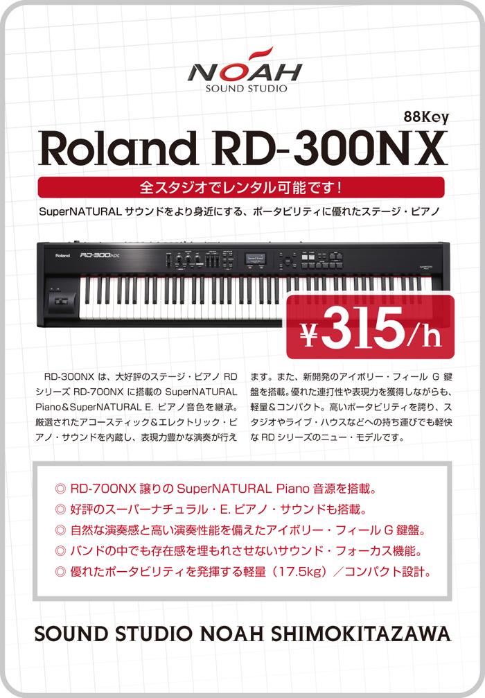 shimokita_rd300.jpg