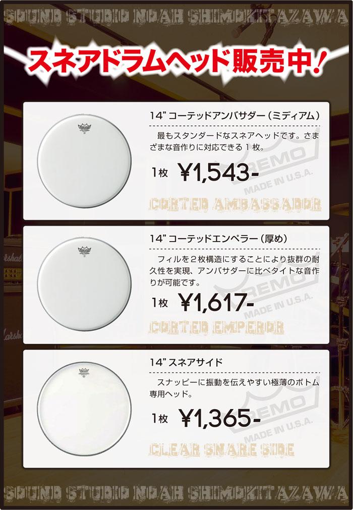 shimokita_snarehead.jpg