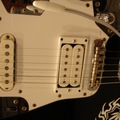 Fender Japan JAGUAR(写真1)
