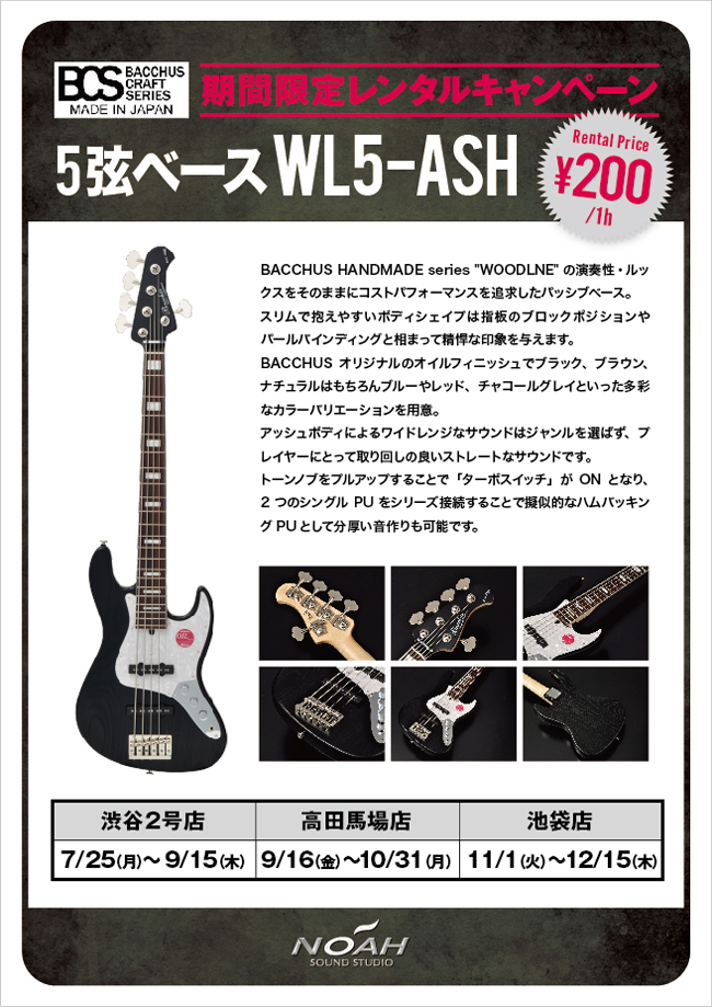 16.7_WL5-ASH.jpg